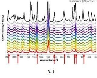 Raman spectra (b.) taken at 2-hour ntervals for δ D-mannitol