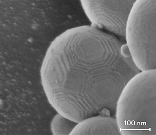 Alumina nanospheres imaged at 700 V using Helios G4 DualBeam. Image courtesy of Mark Darus, Thermo Fisher Scientific.