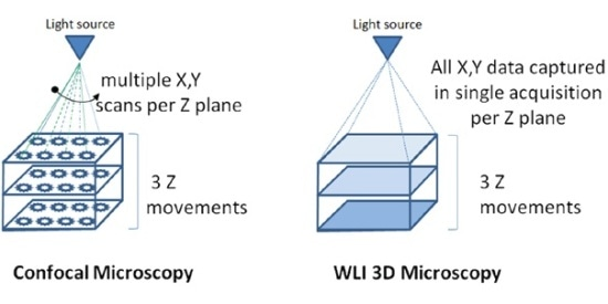 Diagram outlining different scanning techniques utilized by confocal microscopes and 3D microscopes.