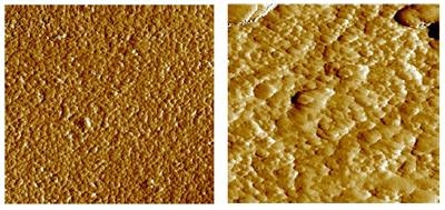 Microstructure changes observed during sintering. The micrograph on the left shows the dispersed particles within the ceramic green body. On the right the structure following sintering is shown for the same material. Here the grains have grown to form an interlocking network.