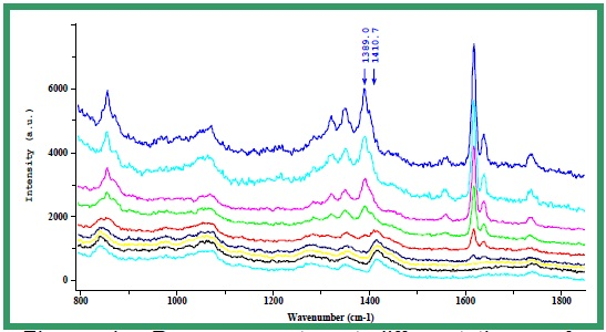 Raman spectra at different times of the reaction