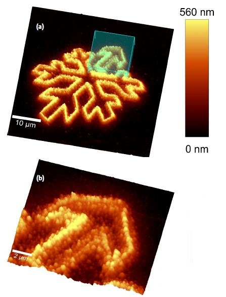 AFM Scan of the structure. Overview[a] and zoomed scan onto one of the structures[b].