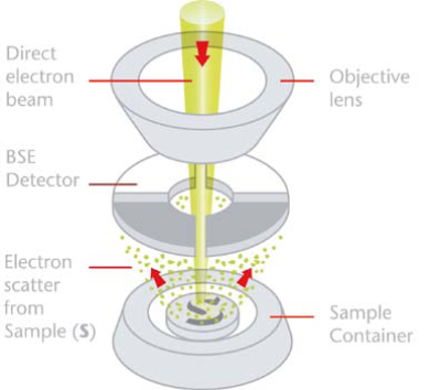 Schematic representation of the Phenom detection system in topographic mode