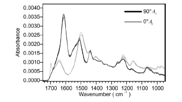 Normalized spectra of five different B. mori silk fibers recorded at 0° and 90°.