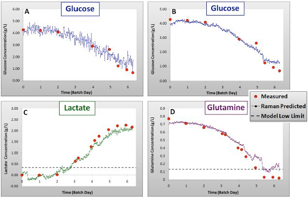 Validation results for glucose: univariate (A) and PLS (B), lactate (C) and glutamine (D) models showing Batch 4 measured and Raman predicted concentrations over time.