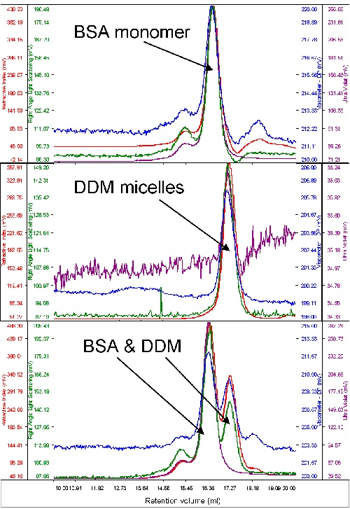 From top to bottom, chromatograms of BSA, DDM and a mixture of the two.
