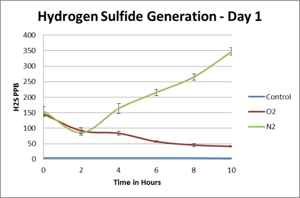 Hydrogen sulfide generation - day one.