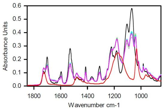 ATR FT-IR Absorbance spectra of CVC septa with various thicknesses (0nm to >10,000nm) of poly-sulfobetaine modification.