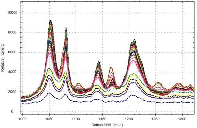 Expanded view of Raman spectra collected during citric acid phase transition.
