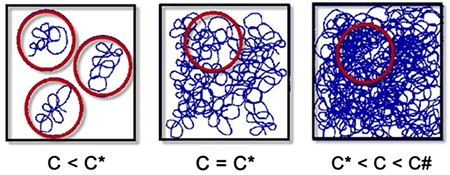 As the concentration of polymer coils within a solution increases, coils begin to interact and entangle.