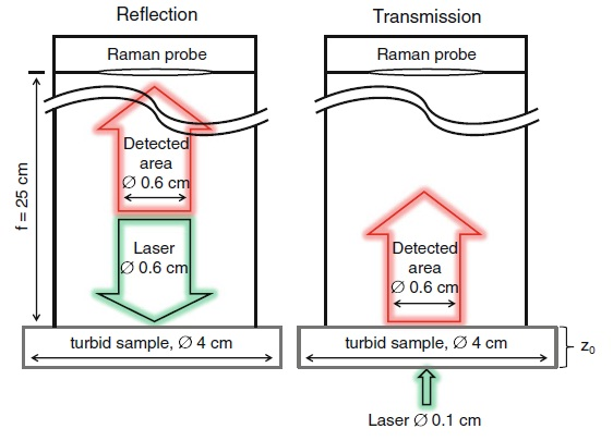 Sampling geometries for reflection- and transmission-mode Raman spectroscopy