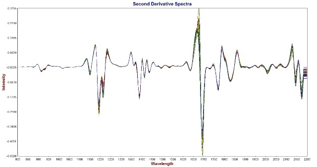 Second Derivative Spectra of jet fuel samples acquired with the Metrohm NIRS XDS Process Analyzer equipped with a stainless steel immersion probe.