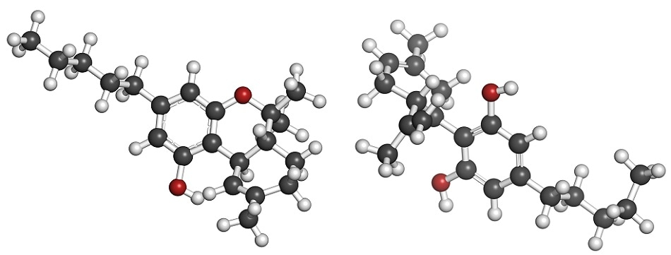 THC (left) and CBD (right) - the two main phycoactive components of cannabis.