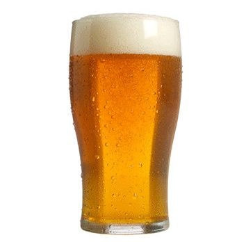 Beer is a complex mixture of macromolecules such as amino acids, proteins, polypeptides, and polysaccharides
