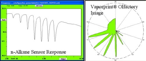 Sensor response to n-alkane vapor standard, here C7-C14, can be displayed as sensor output vs time or its polar equivalent olfactory image