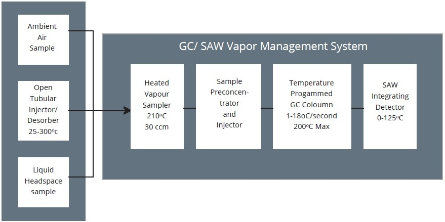 GC/SAW Detection System