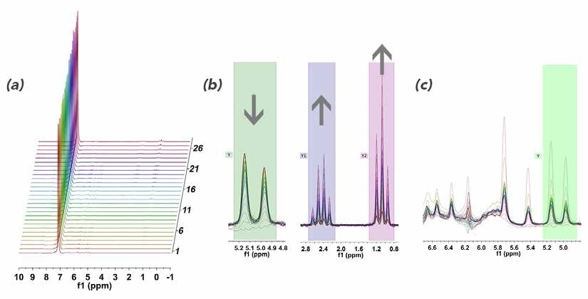 Using The Online Benchtop Nmr Spectroscopy To Monitor