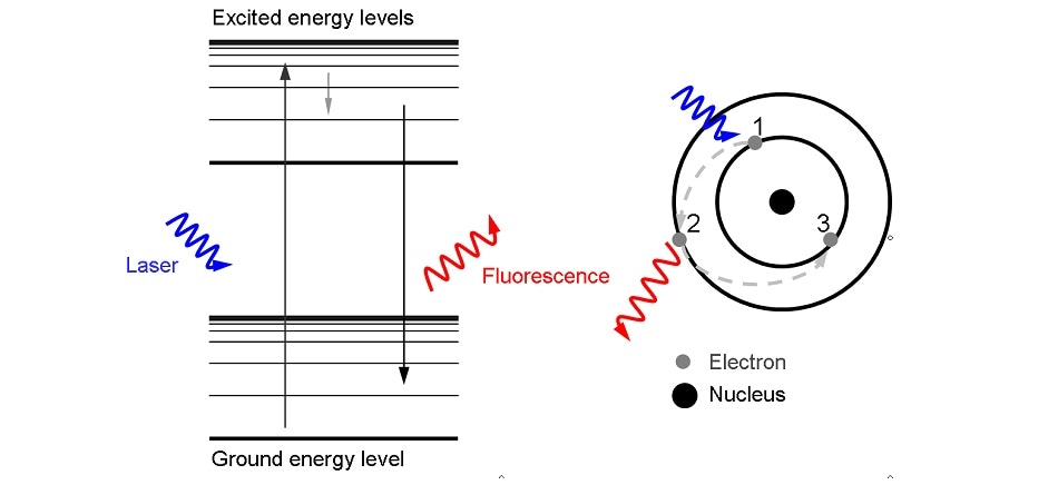 An energy level diagram demonstrating the electronic mechanism of fluorescence.