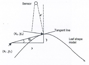 The Tangent line of a leaf surface at point (X0, Y0).