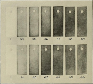 Lead Acetate Detection Strips Circa 1914
