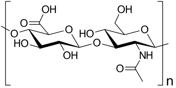 Hyaluronic acid is a natural polymer important in biology and commercial applications.