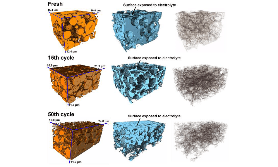 3D reconstructions of electrodes at various cycling stages in terms of active particles (left), porosity with carbon black (middle) and phase interfaces (right). Courtesy of Dr. Bohang Song, University of Oxford