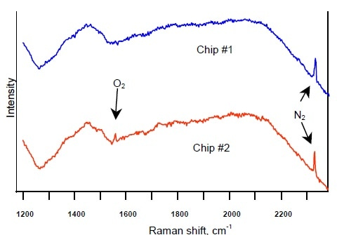 Raman spectra of two microdevice cavities