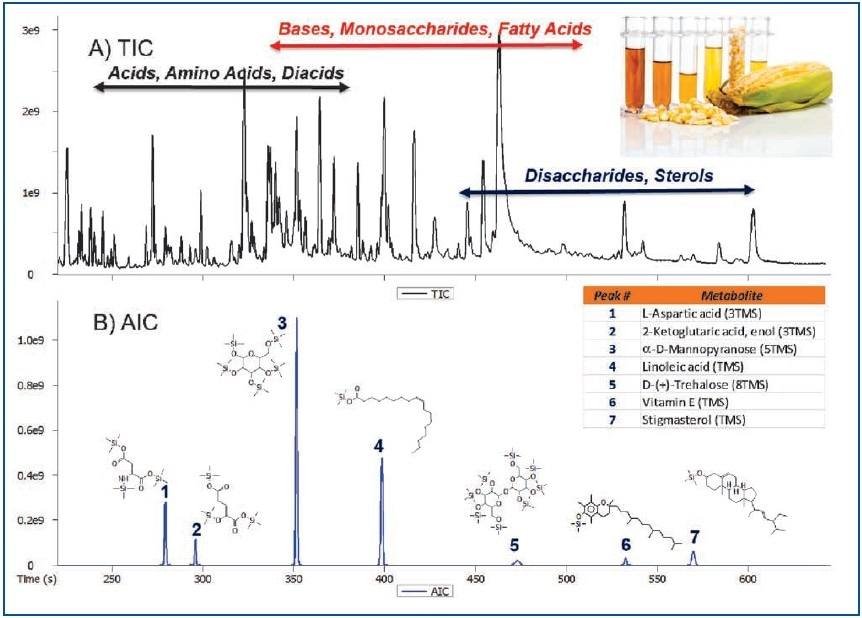 Using a Benchtop GC-TOFMS for Metabolomic Profiling of Rice