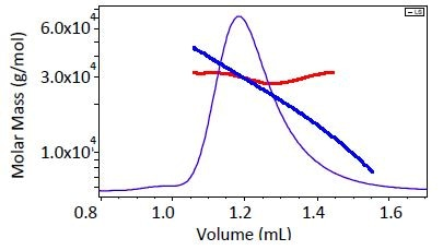 Comparison of single-detector GPC (blue) and MALS analysis (red) of molecular weight for a 29 kDa polystyrene standard. While MALS shows a narrow molecular weight range around 29-30 kDa, column calibration by definition implies that the peak is polydisperse from 20-40 kDa.