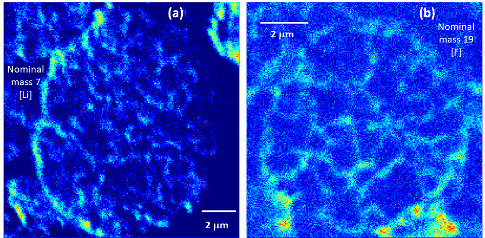 Top projection SIMS images from single cathode particles (a) for nominal mass 7 corresponding to Li and (b) for nominal mass 19 corresponding to F.