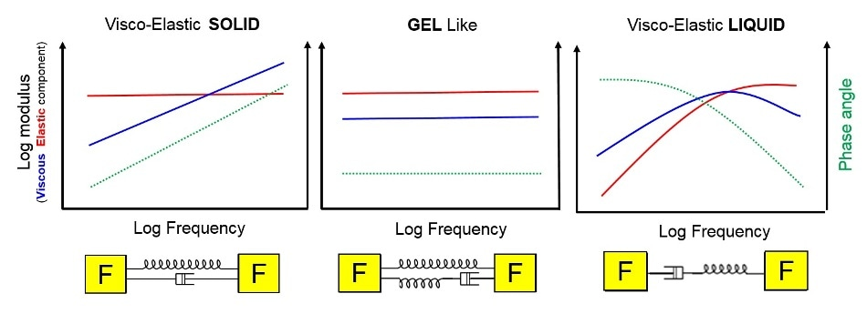 Typical frequency response for a viscoelastic solid, viscoelastic liquid and a gel in oscillatory testing.