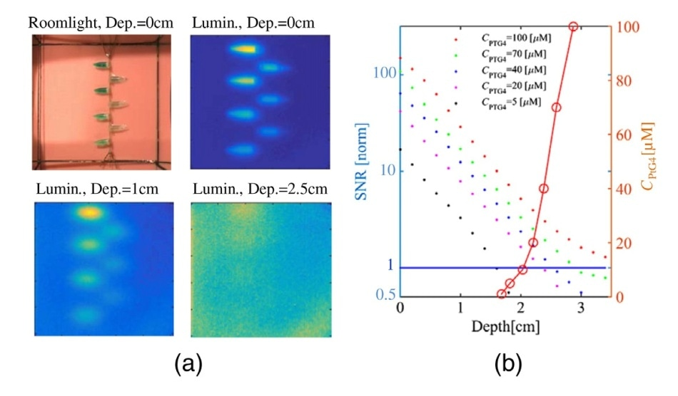 Image quality vs. depth for different concentrations of PtG4 (CPtG4 ) as depicted in the legend, showing (a) the room-light image and luminescence images of the phantom at three different depths in the phantom, and (b) the corresponding signal-to-noise ratio extracted from these images as a function of depth (colored dots). In the same graph, the red line shows the CPtG4 at which SNR = 1 (values on left y-axis).20 Data courtesy of Dr. Brian Pogue, Dartmouth College; first published in J. Biomed. Opt. 23 (3), 030504 (2018), doi: 10.1117/1. JBO.23.3.030504.