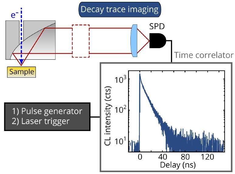 Schematic overview of the decay trace acquisition scheme. CL is coupled into an optical fiber using the fiber coupler module (dashed red line) which sends the light to a single ultrafast detector (SPD in this case). The signal from the detector is read out by the time-correlator system.
