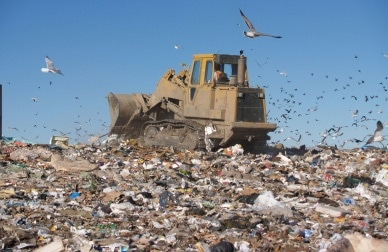 Using EDXRF Spectrometry to Determine Hazardous Elements in Municipal Solid Waste