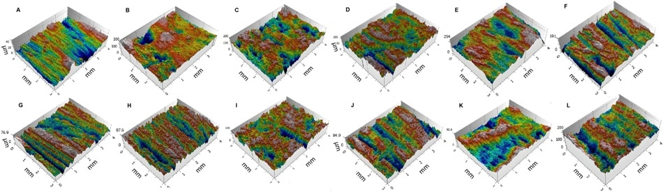 3D renderings of experimental (A, B, C) and archaeological (D to L) facets measured using confocal technique (modified after Rosso et al. 2017).