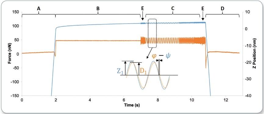 Measuring Nanoscale Viscoelastic Properties with AFM-DMA