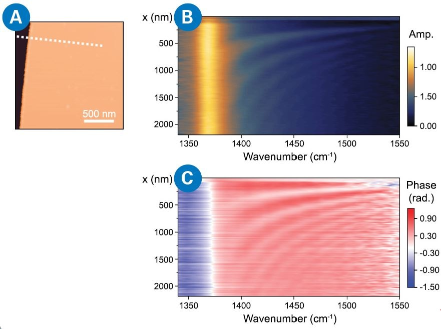 Spatiospectral nanoimaging on a hBN nano flake: (A) The array of spectra is collected under broad-linewidth mode along the dotted white line; By plotting the stack of spectrum in a false color in a waterfall manner with position as vertical axis, a spatiospectral nanoimaging map is created for amplitude (b) and phase (c), respectively. The spatio-spectral scan shows the complete SPP frequency response across the whole range, with high spectral resolution (3 cm-1). Line scan pixel spacing is 15 nm, and each spectrum has an acquisition time of 1 minute, giving a total measurement time of ~2.5 hours  Conclusion