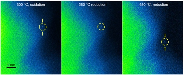 In situ AC-STEM characterization of Ptiso/TiO2: a–c, In situ AC-STEM images of Ptiso/TiO2 after 30 min at different annealing conditions: 300 °C,760 torr of O2 for 30 min (a); 250 °C, 760 torr of 5% H2 (balanced with Ar) for 30 min (b); 450 °C, 760 torr of 5% H2 (balanced with Ar) for 30 min (c). The yellow circles identify the same Pt single atom. A false-coloring scale was used in a–c to enhance contrast on the Pt atom. Nat. Mat. Vol. 18, pages746–751 (2019).