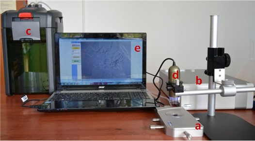 MHT equipment for in situ analysis of shrinkage activity used at ARCH Lab, INCDTP-ICPI, Bucharest. (a) micro heating plate (Linkam LTS 120); (b) temperature controller; (c) water circulator; (d) digital microscope; (e) computer with image MHT software.