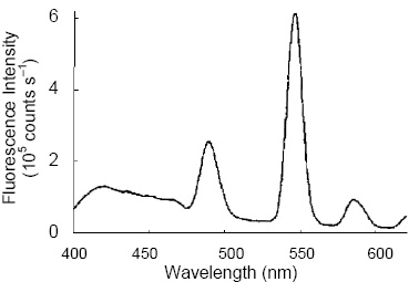 Fluorescence emission spectrum of the phosphor complex, showing luminescence in the visible range.
