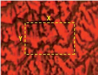 This video image of the same sample in figures 3-6 shows how the programmable sample stage can be used to determine the X-Y extent of a 3D map.