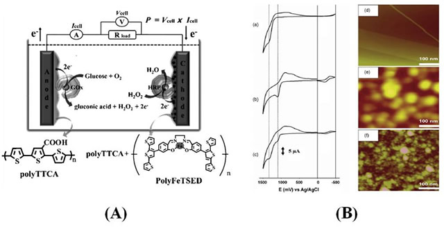Conductive Polymers Applications For Electronic Devices