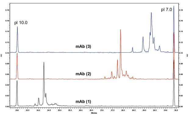 cIEF Separations of Three Basic mAb's. Electropherograms for three basic mAbs separated by cIEF using the same conditions as shown in Figure 4.