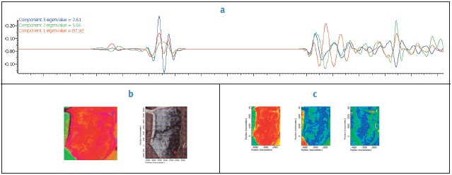 Analysis of healthy rat brain tissue. (A) Shows the second derivatives of the spectral components generated from the multivariate curve resolution. (B) Is the RGB plot displaying the relative coverage of the components seen in A along with the video capture of the sample. (C) Shows the relative coverage of the three components generated from the multivariate curve resolution.