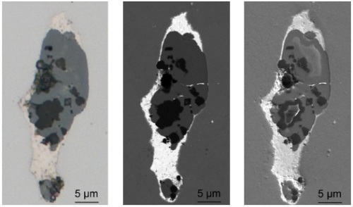 "Brightfield image in LM (left) as well as BSE (center) and SE (right) images in SEM of the conspicuous mixed inclusion shown in Fig. 1. Images were acquired using the CLEM technique with the ""Shuttle & Find"" module."
