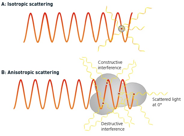 Figure A. shows an isotropic scatterer is small relative to the wavelength of the light and scatters light evenly in all directions. Figure B shows an anisotropic scatterer has significant size compared with the wavelength of the incident light and scatters light in different directions with different intensities.