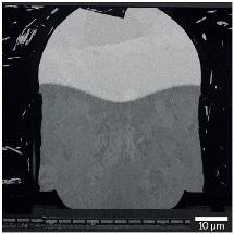 Imaging of a Copper Pillar Cross-section using the TESCAN UHR Triglav™ SEM Column