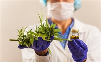Lab Techniques for Cannabis Analysis