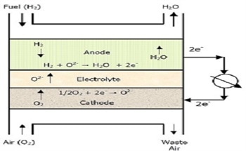 Solid Oxide Fuel Cell Materials and their Particle Size Analysis