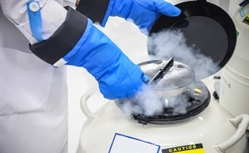 Why Labs Require Liquid Nitrogen Servers
